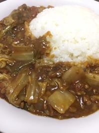 コトコト煮込む簡単白菜カレー - たっちゃん!ふり~すたいる?ふっとぼ~る。  フットサル 個人参加フットサル 石川県