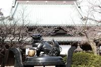 【豪徳寺】 - うろ子とカメラ。