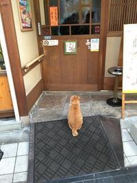 一年ちょいぶりに松山へ9 お土産買って帰ろう  - ホリー・ゴライトリーな日々
