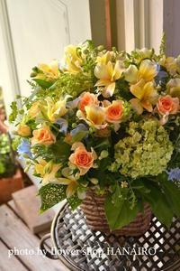 周年のお祝いに♪イエロー×ブルーで春のフラワーアレンジメント。 - 花色~あなたの好きなお花屋さんになりたい~