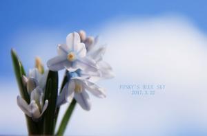 FUNKY'S BLUE SKY