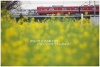 黄色×赤色 - 明日には明日の風が吹く