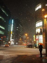 3月23日 今日の写真  「また降った」 - ainosatoブログ02