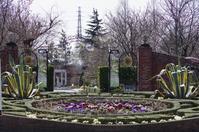 イングリッシュガーデンの春 Ⅰ - 季節の風を追いかけて