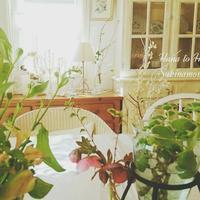 可愛い肉球マシュマロを見つけ♪ - 花とフラと好きなものに囲まれて…♪