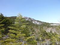 急坂を上り 縞枯山 (2,403M) 登頂する - 風の便り