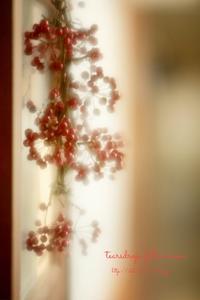 *癒しの空間* - 心写心癒  ~心の鏡~