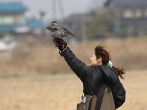 写真展開催中 - 『彩の国ピンボケ野鳥写真館』
