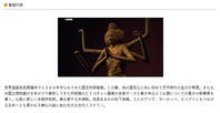 NHKドキュメンタリー「阿修羅 1300年の新事実」を見て - あじさい通信・ブログ版