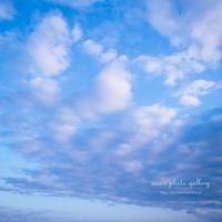 sora voice - eico's photo gallery
