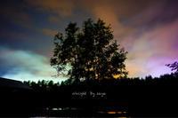 空が染まる夜 - o'night