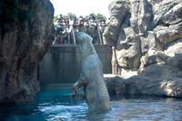 お行儀が良いツヨシ - 動物園へ行こう