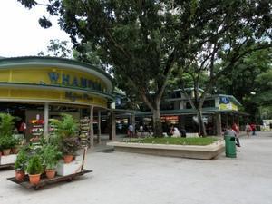 安定した美味しさ!板麺(Whampoa Drive) - 気になるシンガポール+αbyLee