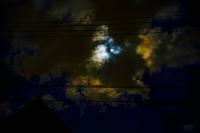夜空の夢を見た - ホンテ島 日記