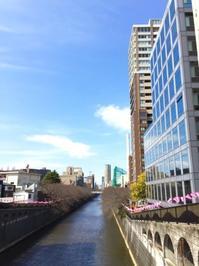 東京&鎌倉心景「目黒、そして小町」 - 海の古書店