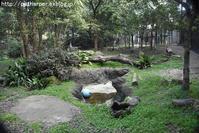 2017年3月 到津の森公園 その1 くつろぐミライちゃん - ハープの徒然草
