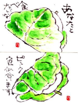 柏餅の絵手紙 ♪♪  - NONKOの絵手紙便り