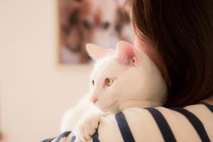 レア、今日で生後11ヶ月を迎えました♪ - Omoブログ