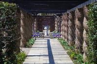イングリッシュガーデンの春 Ⅱ - 季節の風を追いかけて