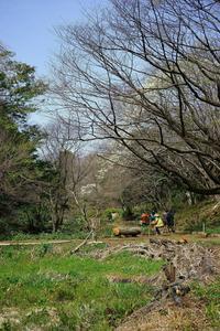 神代農場一般公開~農場内の風景 - 柳に雪折れなし!Ⅱ