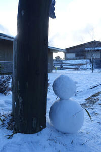 六甲山上における雪だるま - YAJIS OFFICE BLOG