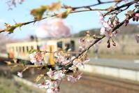 海浜鉄道 中根駅 - フェイズと写真と時々・・・!