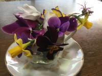 春ですね -  Flying gardener / Yoko Cottage Garden