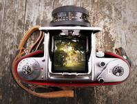 一目惚れのカメラ - 日々の写真