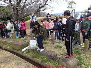 2017年3月25日学童さん 6年生お別れ餃子、畑の花と チャーハン - 衣川圭太の外遊び日記と一般社団法人マミー(マミー保育園・マミー学童クラブ)の出来事