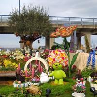 花と緑の祭典 - La Pousse(ラプス) フラワーアレンジメント教室