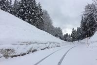 春の雪 - 松之山の四季2