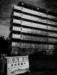 巨大な空き家群の意味するもの - 節操のない写真館