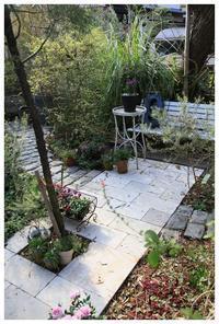 ガーデニングが楽しい季節です^^ - natu     * 素敵なナチュラルガーデンから~*     福岡県で庭の施工、外構造りをしてます
