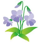 春の花から学ぶ - 隣の国の言葉にこがれて
