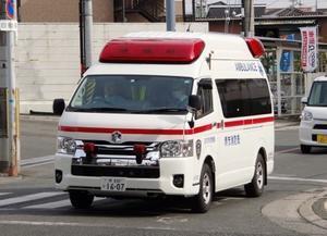 新車情報(追) - ほのほの堺消7175日記