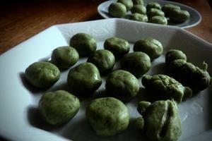 ヨモギハエボシフシ(蓬葉烏帽子付子)、ヨモギ草餅 - 世話要らずの庭