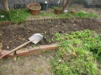 今日の庭仕事 - 花の自由旋律