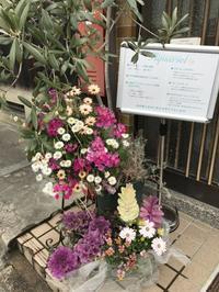 Organic Baby Kyoto:親子ヨガ 〜maya先生〜 - アクエリエル京都