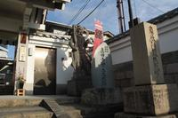 空堀と大阪冬の陣 - 浜千鳥写真館