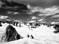 """""""地球って面白いなぁ〜""""。そんな景色に出会えるピナクルズ ツアー - 南米・中東・ちょこっとヨーロッパのアイスクリーム旅"""