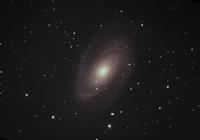M81 - hiroのフィールドノート plus