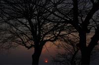ある日の夕方 - ホンテ島 日記