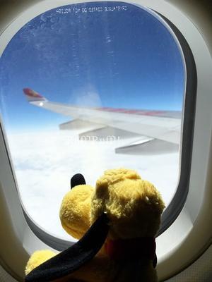 香港旅行2017年3月 1日目 #1 - Ruff!Ruff!! -Pluto☆Love-