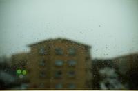 雨の日曜日 - BobのCamera