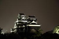 熊本城復興を願って - YOSHIの日記