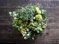 退職される女性へ。「鉢物の多肉植物を埋め込んだフラワーアレンジメント」。2017/03/23。 - 札幌 花屋 meLL flowers