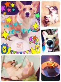 ★Happybirthday★ - タイ式マッサージ サイチャイ