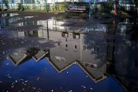 公園の水たまり - 一人の読者との対話