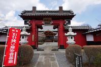 花の寺でベニバナミツマタ等 - 『私のデジタル写真眼』