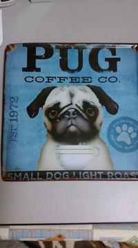 Pug Cafe オープンします♥ - はばたけ MY SOUL